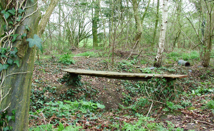 Eco-woods